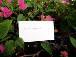 You are Beautiful Taken in Singapore
